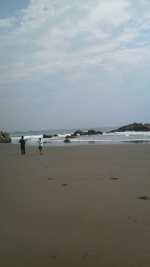 大自然のサーフビーチ