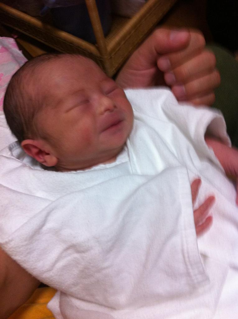 昨夜、産まれました。