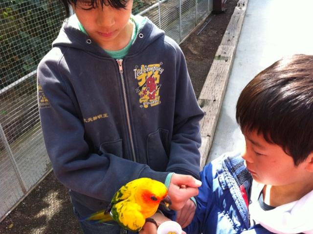 掛川 花鳥園に来ました